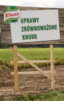 Uprawy zrównoważone Knorr