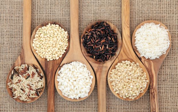Odmiany ryżu